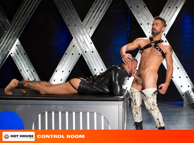 Hothouse cocks Tony Orion Tommy Defendi Adam Ramzi fucking shoots spray thick white cum chiseled abs 001 male tube red tube gallery photo - Adam Ramzi, Tommy Defendi and Tony Orion