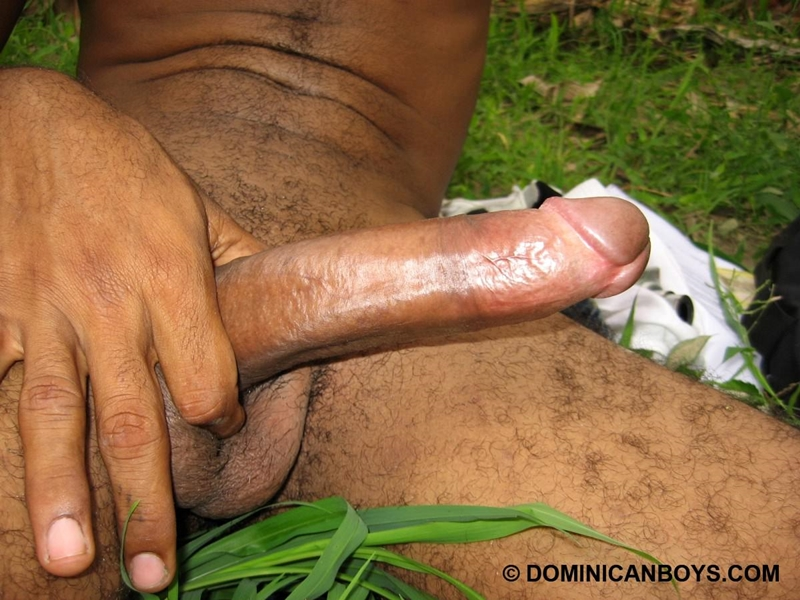 DominicanBoys Juan sexy light chocolate brown twink body hair masculine 21 year old massive 9 nine inch cock 001 tube download torrent gallery photo - Juan