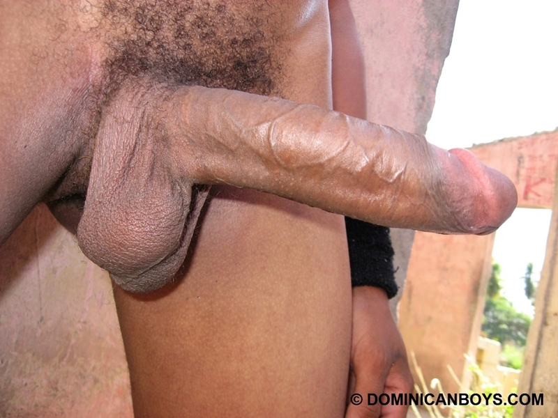 DominicanBoys smooth sexy Haward huge uncut cock erect grows 9 inch 22 years old black dude works uncle banana farm 001 tube download torrent gallery photo - Haward