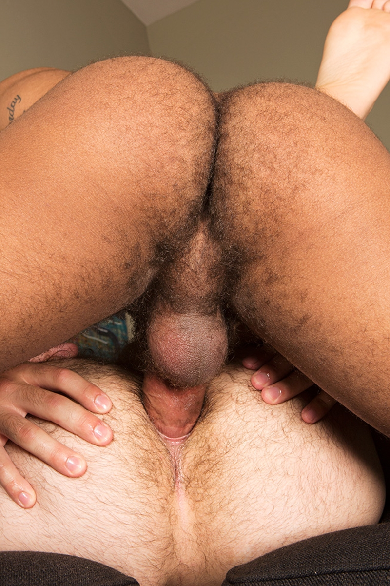 Hairy ass men fucking