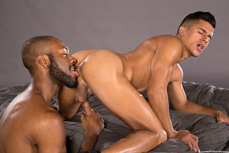 Gay porno photo galleries