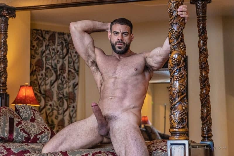 Hairy muscle dudes Mason Lear Ricky Larkin big thick dick anal fucking 013 gay porn pics - Hairy muscle dudes Mason Lear and Ricky Larkin big thick dick anal fucking