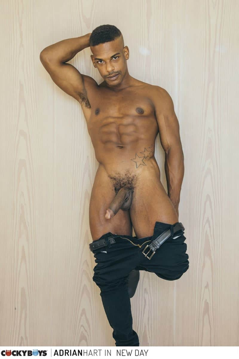 Sexy ripped black muscle stud Adrian Hart huge cock bareback fucking young dude Tannor Reed tight boy ass 008 gay porn pics - Sexy ripped black muscle stud Adrian Hart's huge cock bareback fucking young dude Tannor Reed's tight boy ass