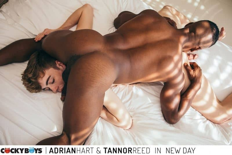 Sexy ripped black muscle stud Adrian Hart huge cock bareback fucking young dude Tannor Reed tight boy ass 022 gay porn pics - Sexy ripped black muscle stud Adrian Hart's huge cock bareback fucking young dude Tannor Reed's tight boy ass