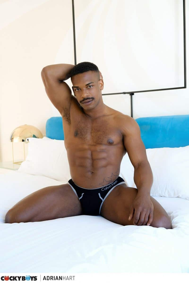 Hot black stud Adrian Harts huge thick ebony dick bare fucks young twink Avery Jones tight bubble ass 005 gay porn pics - Hot black stud Adrian Harts' huge thick ebony dick bare fucks young twink Avery Jones's tight bubble ass